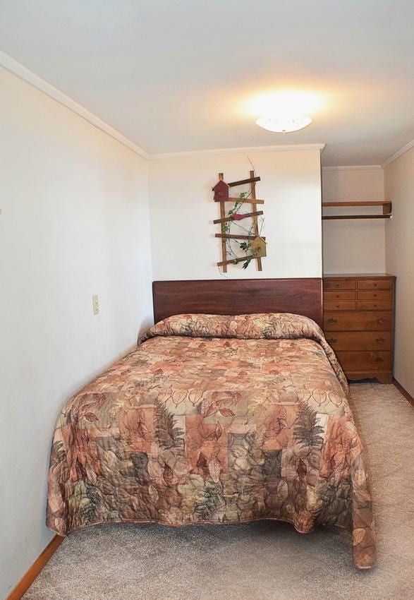 Finch House Four Bedroom Cabin Canary Beach Resort Minnesota